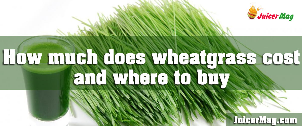 How much does wheatgrass cost and where to buy