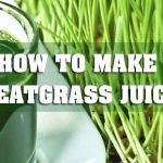 How to make wheatgrass juice | juicermag.com