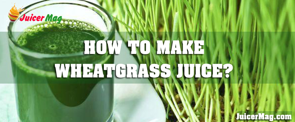 How To Make Wheatgrass Juice?